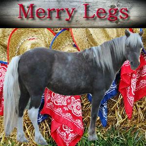 Merry Legs 4